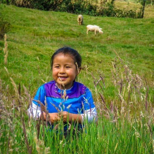 4 de Julio del 2019. Hermosa niña jugando en los pastizales en contacto con la naturaleza, en un día soleado y con un aire puro y fresco.